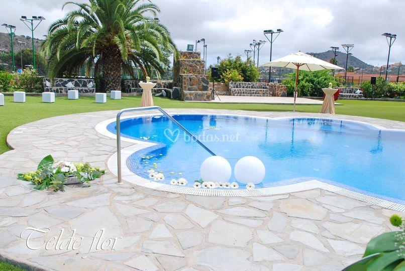 Decoración de piscinas de Telde Flor | Foto 129