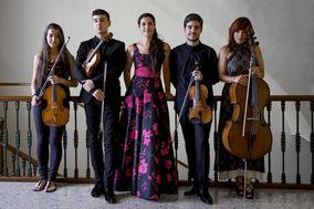 Luxmusicae