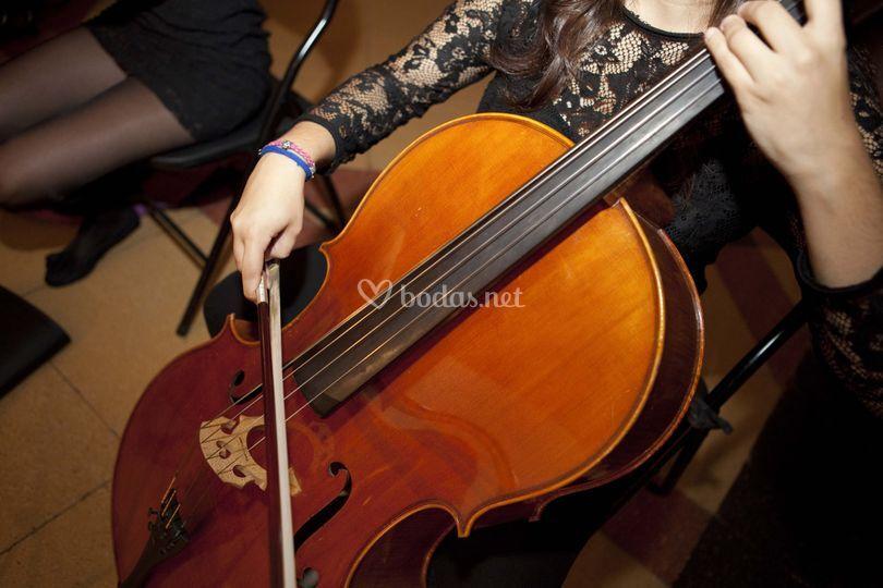 Elena, violoncello