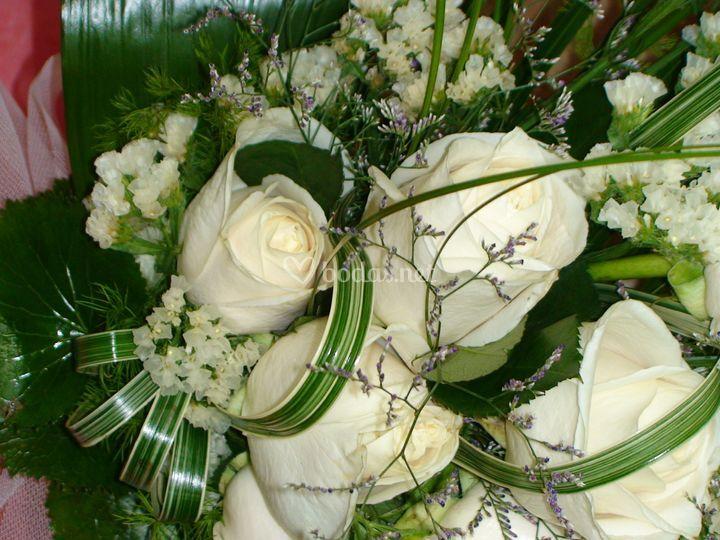 Flores Adrian
