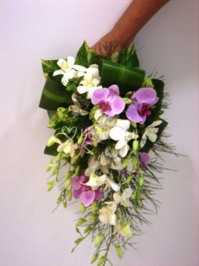 Ramo novia de orquídeas