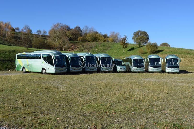 Autobuses + minibuses