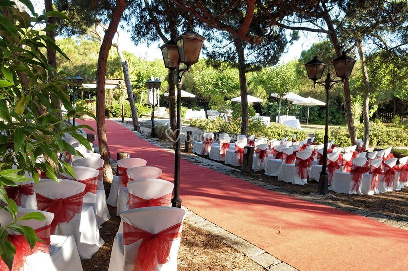 Sillas ceremonia boda