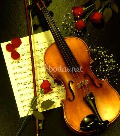 Servicios musicales