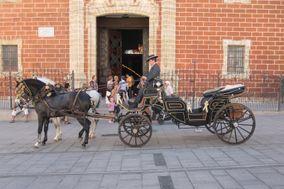 Jose Luis - Coche de caballos
