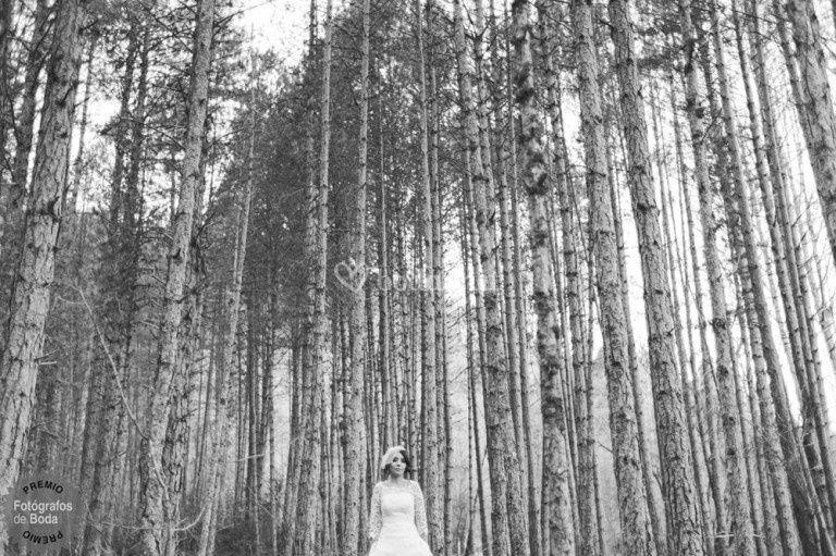 La novia y las vistas