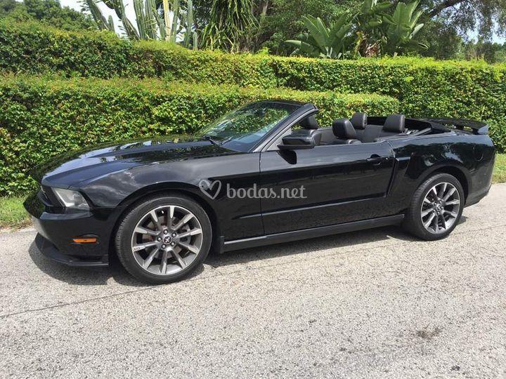 Ford Mustang CS 2012
