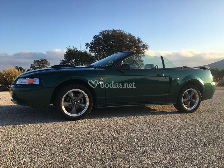 Mustang GT 2001