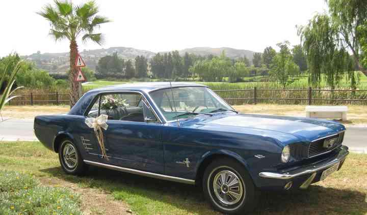 Mustangs Costa del Sol
