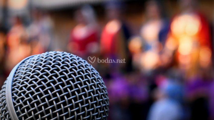 Microfonía profesional