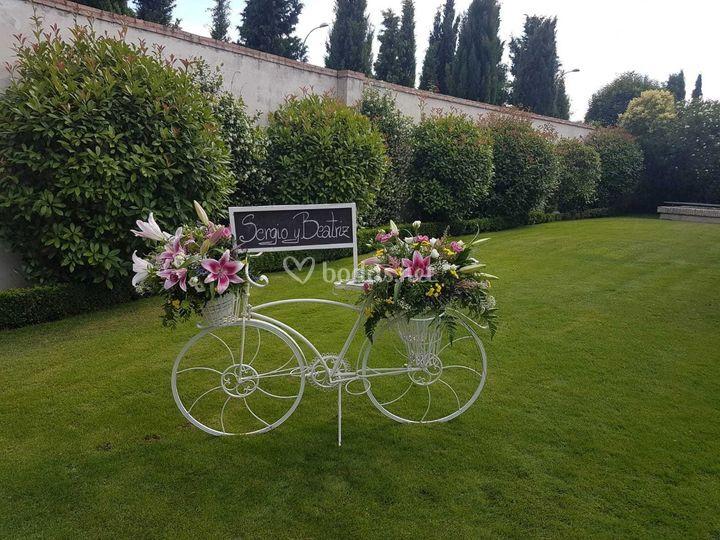 Bicicleta de bienvenida