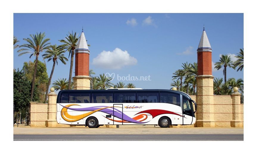 Autocar de Lujo de 54 plazas