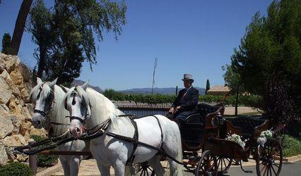 Carruatges de Cavalls Monistrol 1