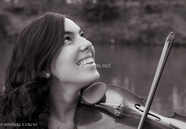 Virginia viola