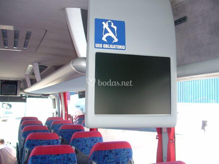 Interior del autobús para 56 plazas