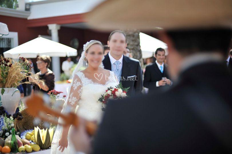 Mariachi bodas