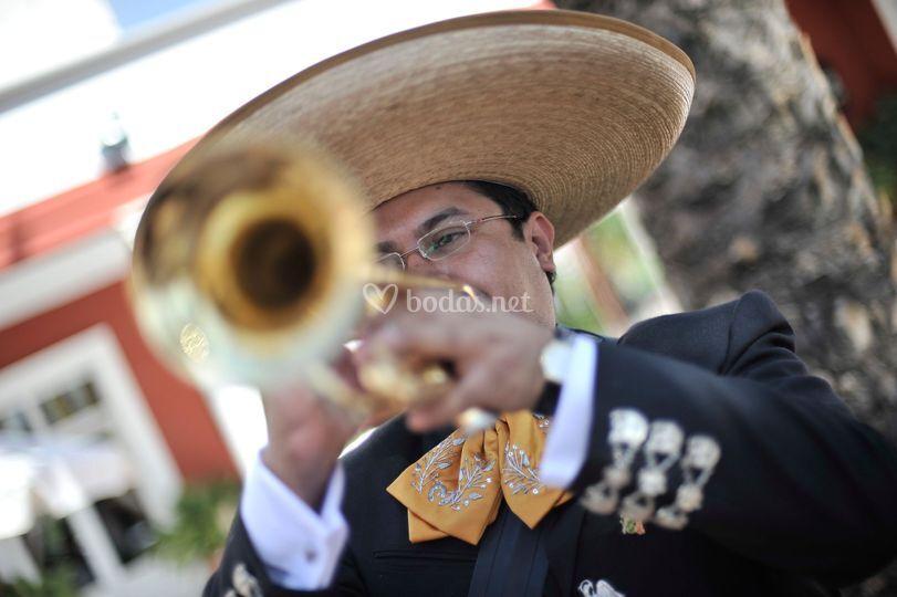 El mariachi en granada