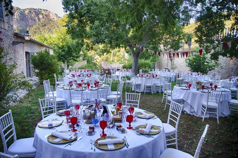 Montaje de bodas exterior
