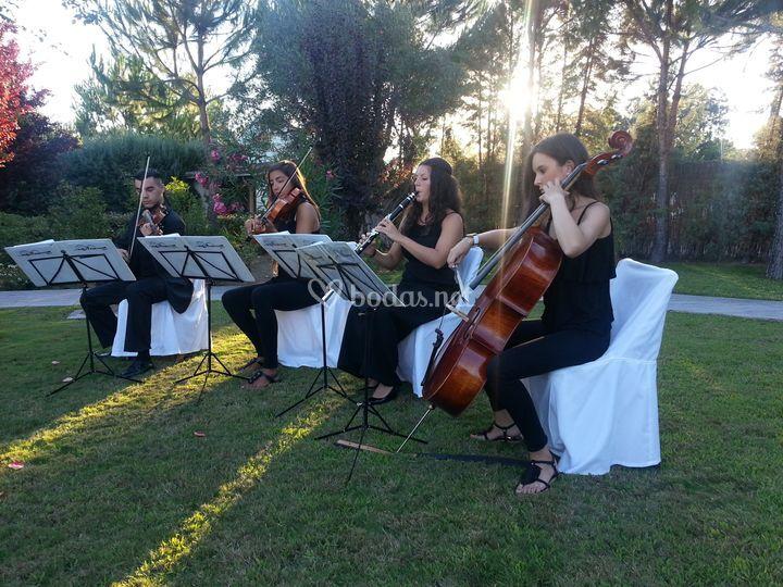 Cuarteto de Cámara para bodas