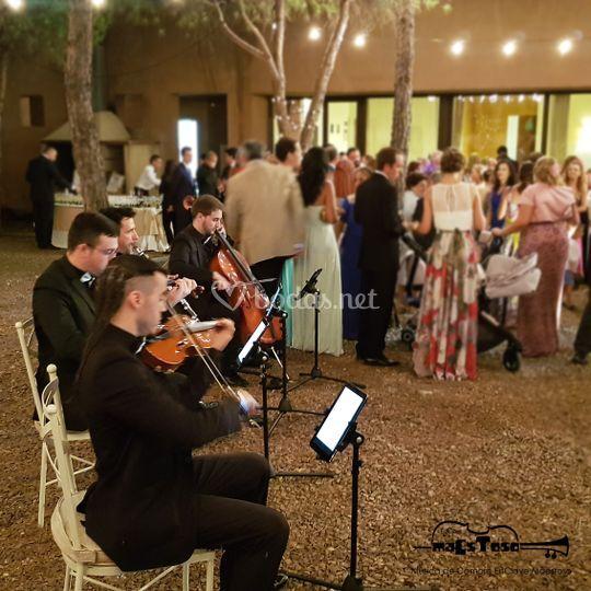 Música para cócteles de boda