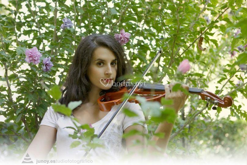 Violín: Diana Valencia