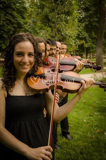 Violinada