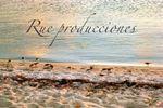 ©RUE Producciones