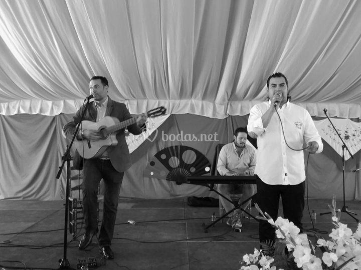 Grupo Flamenco Voces del Pueblo