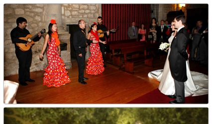 Flamenco Pura sangre 2