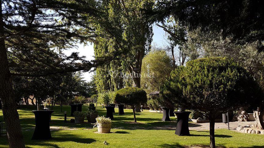 Jardines zona c ctel de jard n el botero foto 7 for Jardin el botero