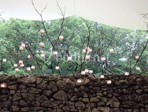 Decoración floral de Bodas