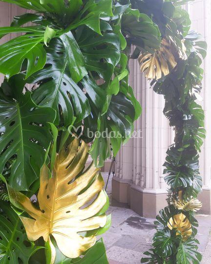 Arco vegetal