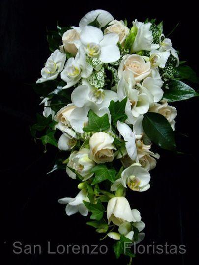 Flores de primera calidad