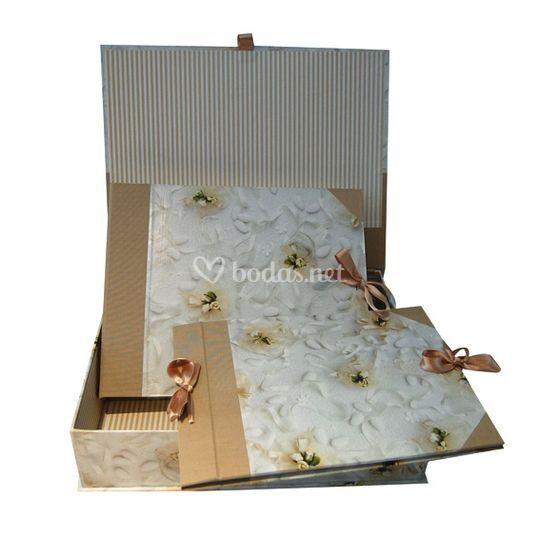 Conjunto libro+álbum+caja