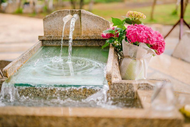 Naturaleza y agua, relax
