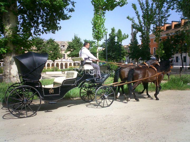 Coche de caballos Miguel Ocaña