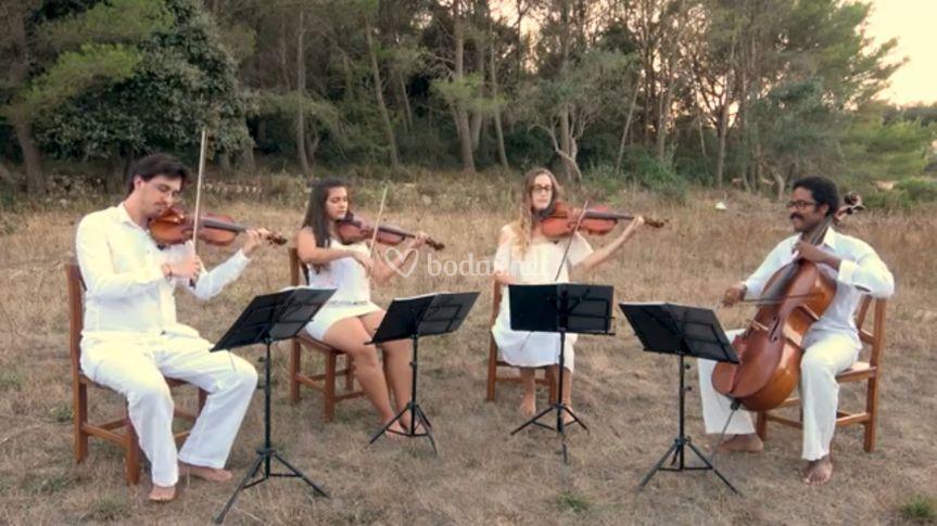 Cuarteto clásico