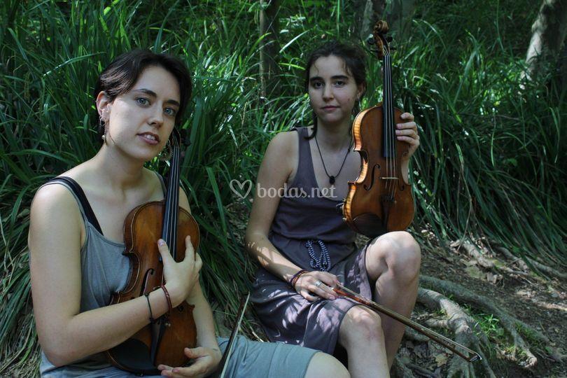 Arrels Music