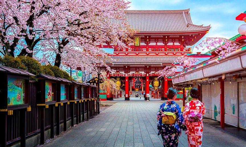Japón - Tokio