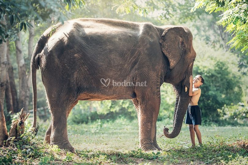 Turismo sostenible Thailandia