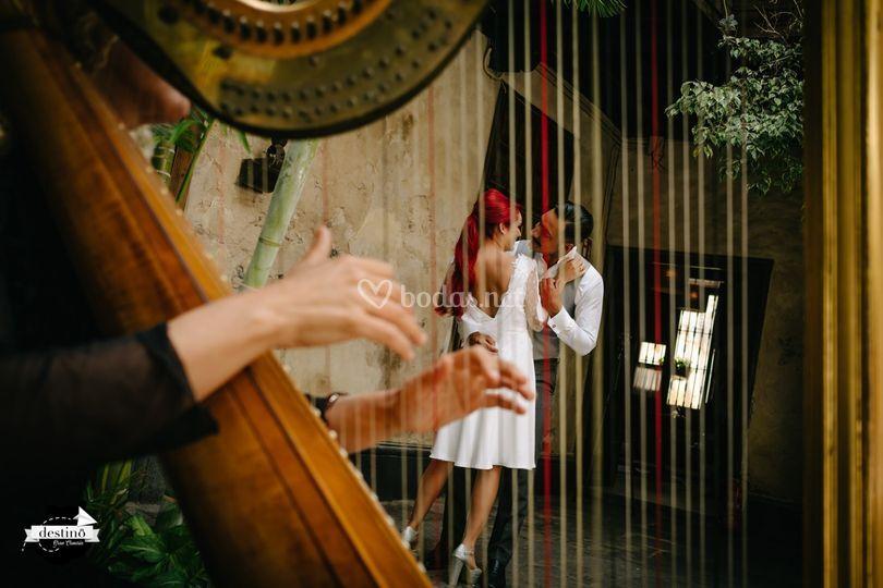 Arpa para bodas