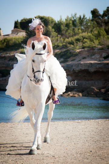 Novia entrando a caballo