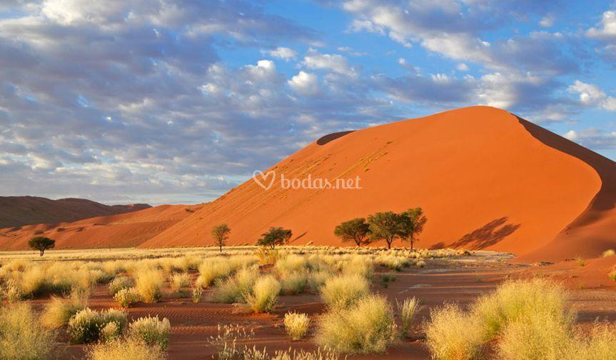 Namibia, origenes