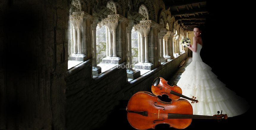 La música para tu boda