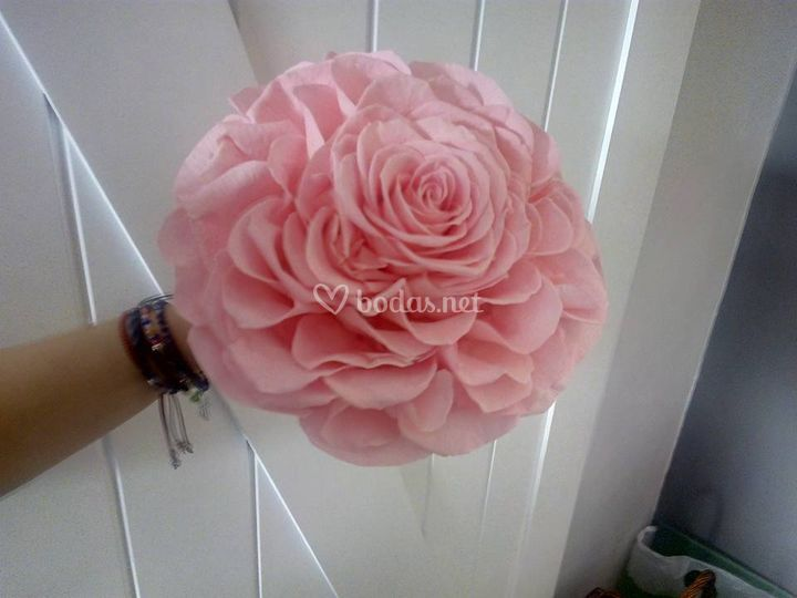 Rosmelia Rosa  Pink
