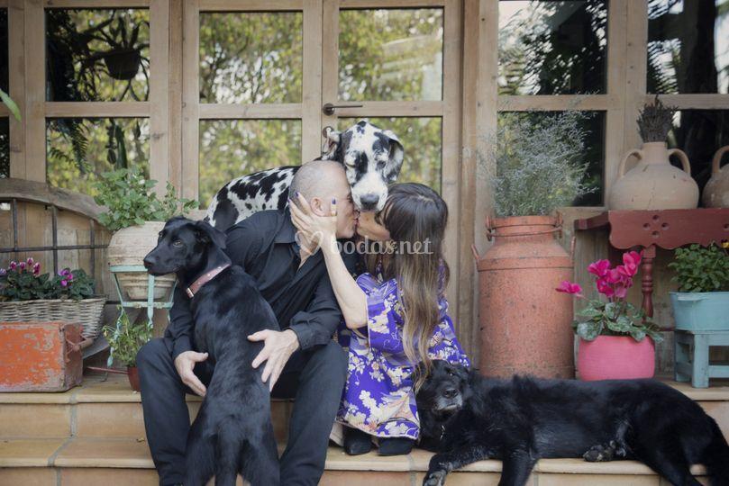 Beso con perros