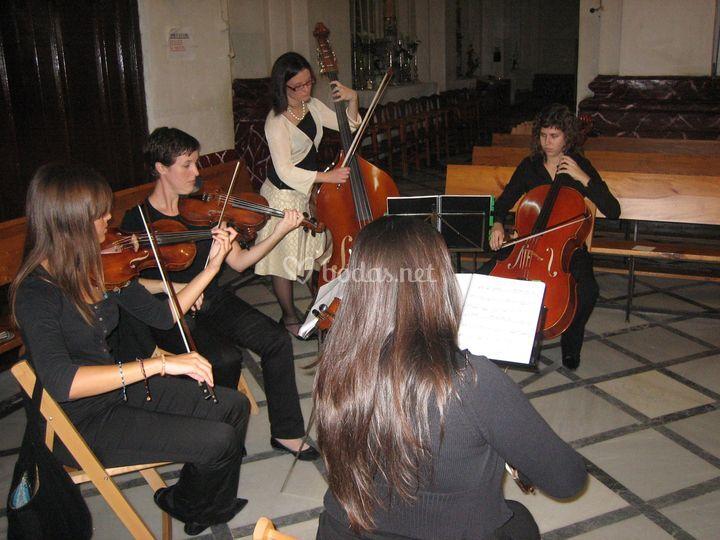 3 violines, violoncello y contrabajo