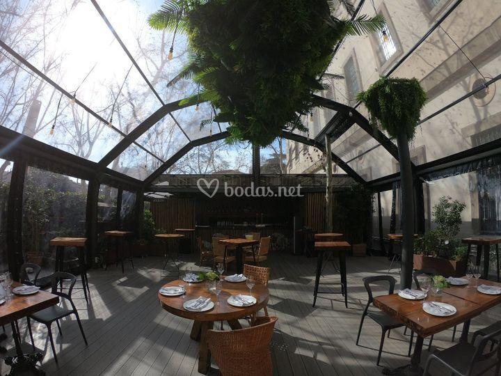 Carpa con techo transparente