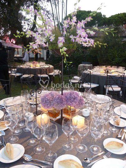 Montaje cena en jardines