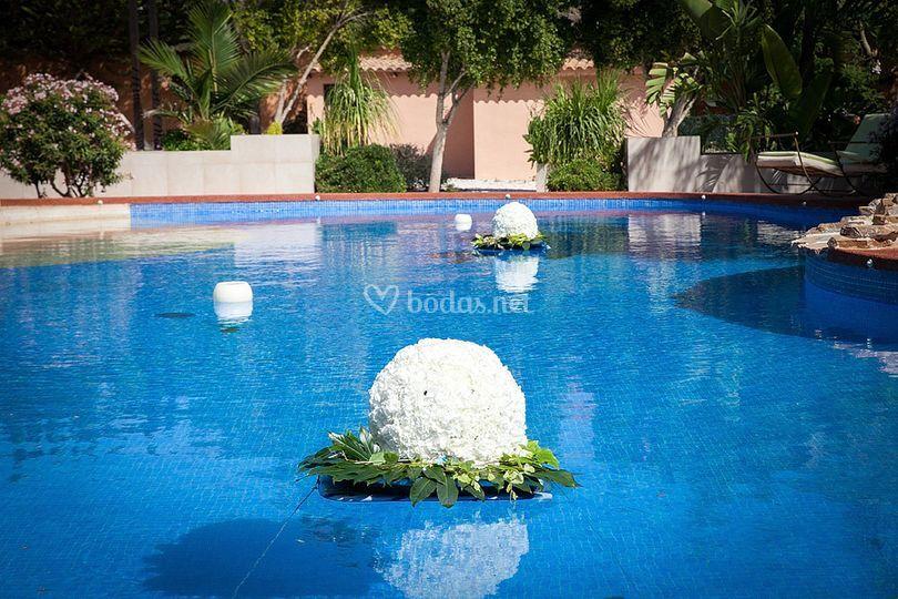 Bolas en la piscina